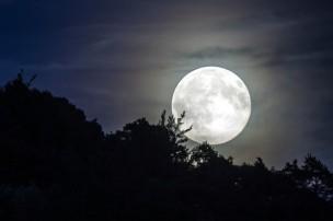 full-moon-1775765_640.jpg